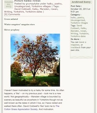 'rowan' haiku published on grumpytyke blog